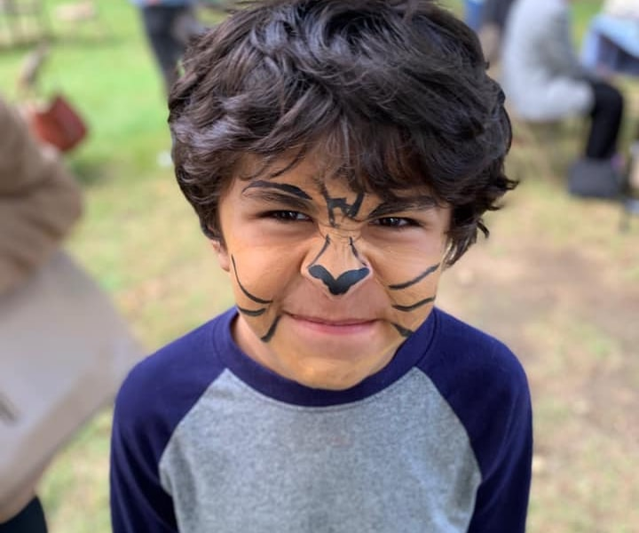 A child with his face painted as a cat