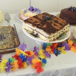 A table displaying a variety of cakes
