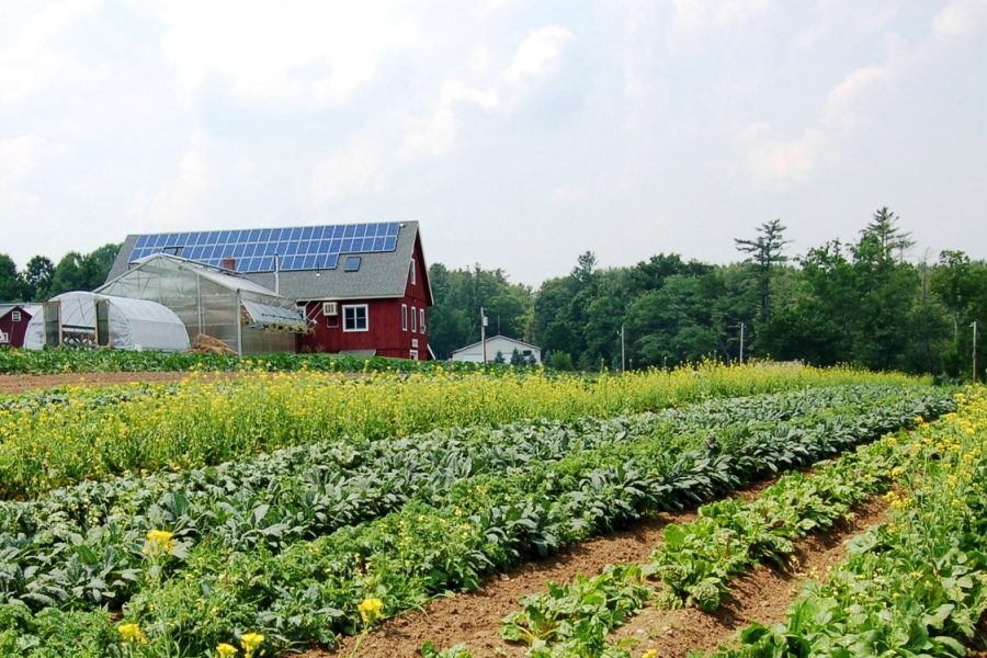 A red barn with rows of crops